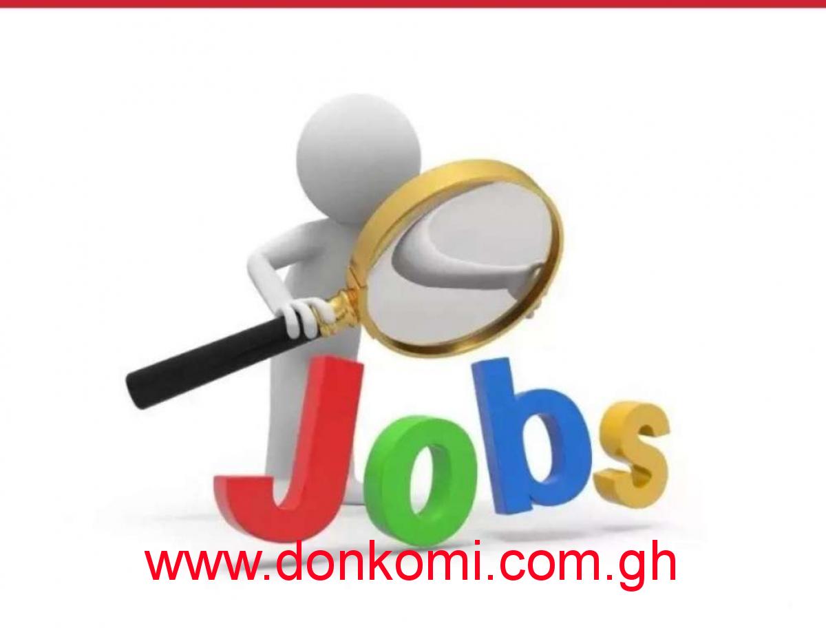 Office Work ( Network Marketing)