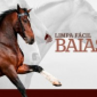LIMPA FÁCIL BAIAS