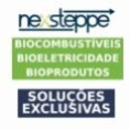 Nexsteppe desenvolve tecnologia de ponta para análise de híbridos de sorgo