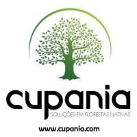 Cupania - Soluções em florestas nativas