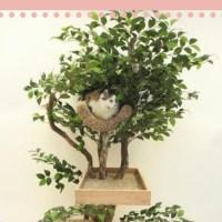 Árbol para gato