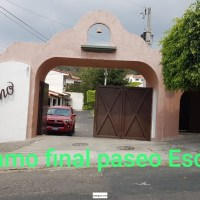 """EL ALAMO""  FINAL PASEO ESCALON"