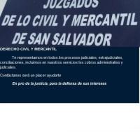 SERVICIOS LEGALES - EN MATERIA CIVIL Y MERCANTIL