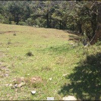 Lindo Terreno San Ignacio