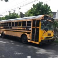 Bus Blue bird 2011