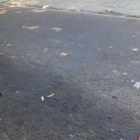 TERRENO EN VENTA CIUDAD MERLIOT