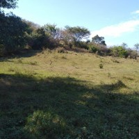 El Paisnal (San Salvador) terreno 9,600 v2, agrícola, fértil