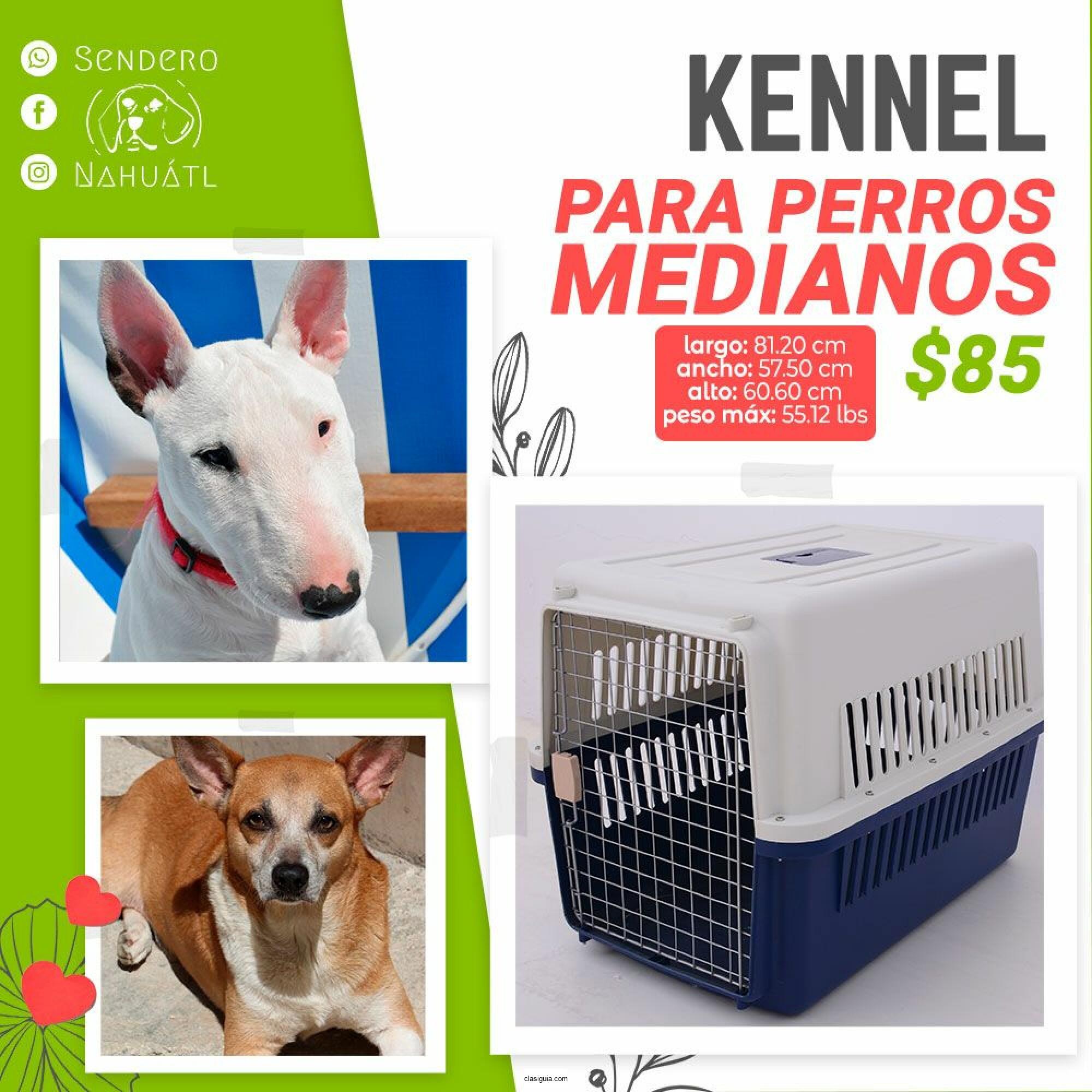 Jaula transportadora o kennel para perro