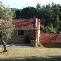 Quinta do Pinheiro Manso - Holiday Home in the middle of nature