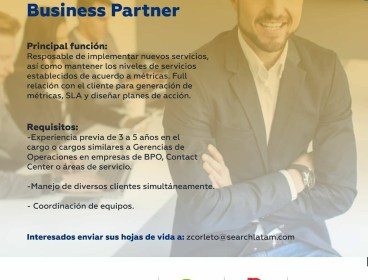 Services Delivery Business Partner