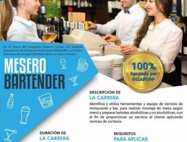 Mesero Bartender