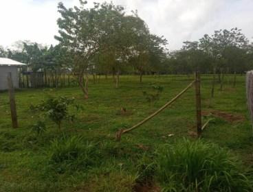 Lotes de oportunidad en Chilamate, Sarapiquí, Heredia