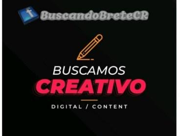 Creador de Contenido-Marketing