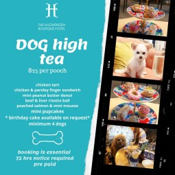 Dog High Tea at The Hughenden Boutique Hotel