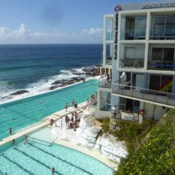 Bondi Icebergs - Local Membership $25