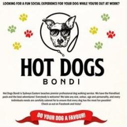 Hot Dogs Bondi - Dog Care & MInding