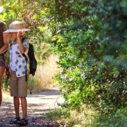 Find your Wild Summerama Treasure Hunt