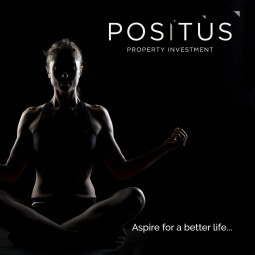 POSITUS PROPERTY INVESTMENT