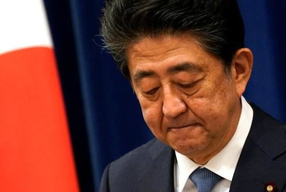 """Japan's """"Cherry Blossom Appreciation Meeting"""" Storm: Legal groups demand suing Shinzo Abe"""