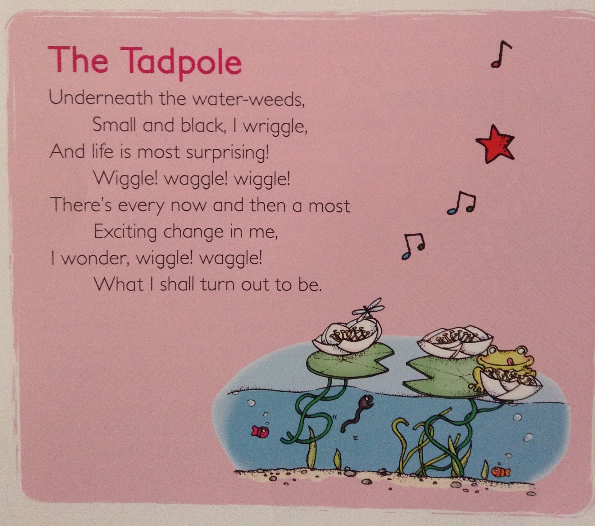 Great Rhymes Make Great Readers Holbrook Primary