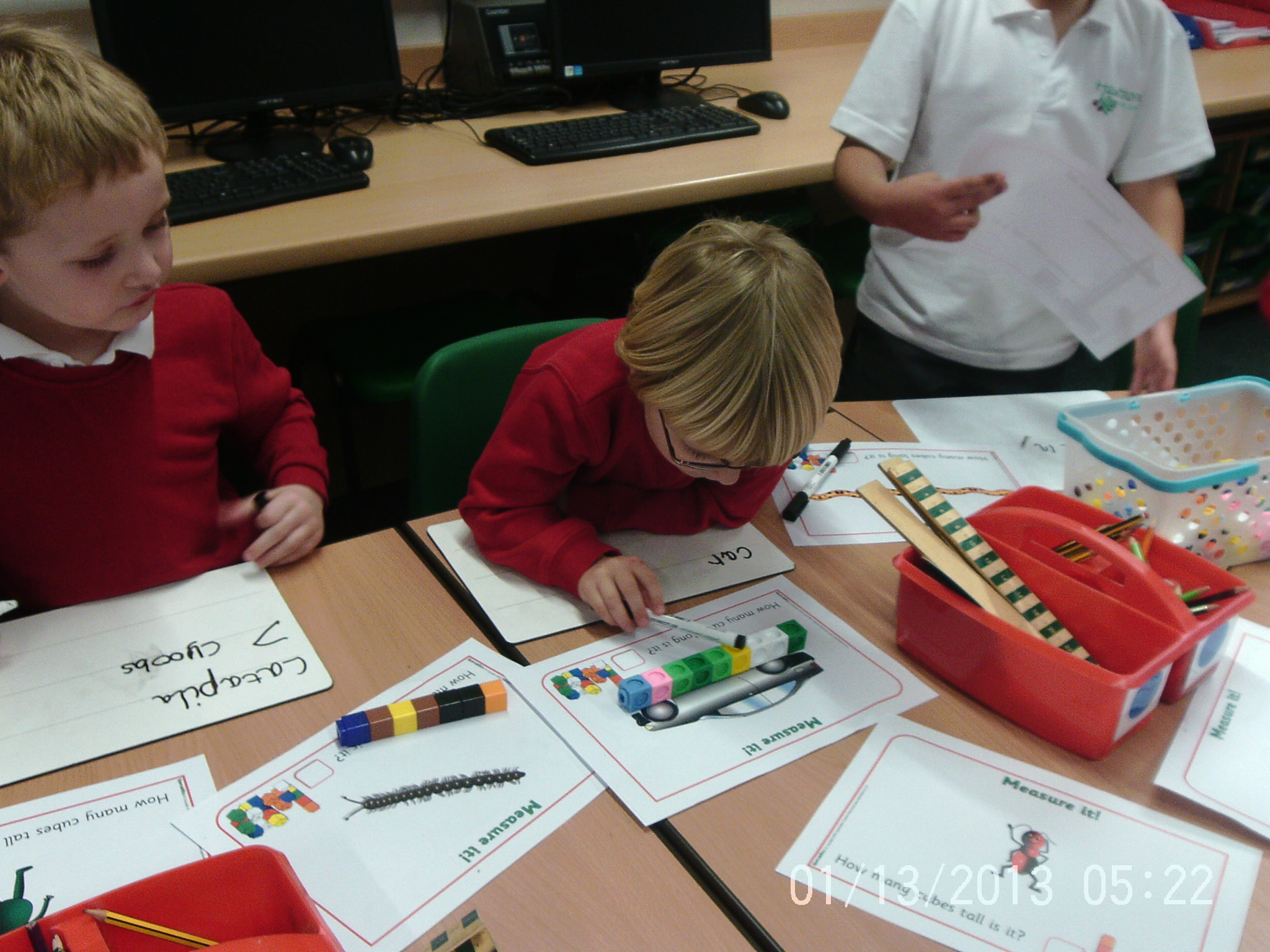 Height And Length Year 1 Robins
