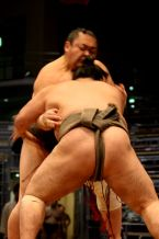Sumo - not his best angle