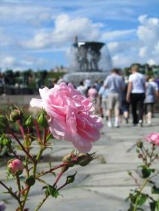 Norway_Aug2011-90