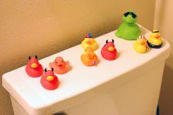 January 19, 2013: Rubber Duckies