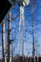 March 16, 2013: Icicle