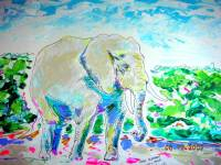 Elephant 2007