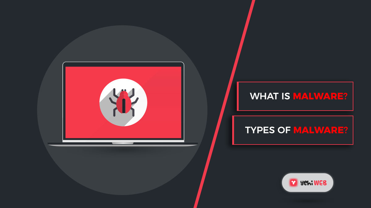What is malware and what are the most common types of malware?