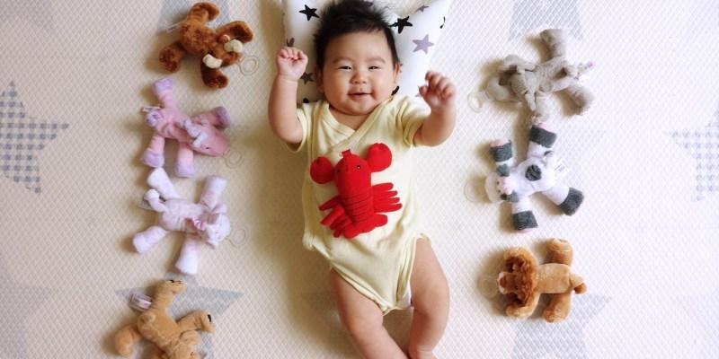 [母嬰] 育兒必備nookums安撫奶嘴娃娃-讓奶嘴不會掉的好物