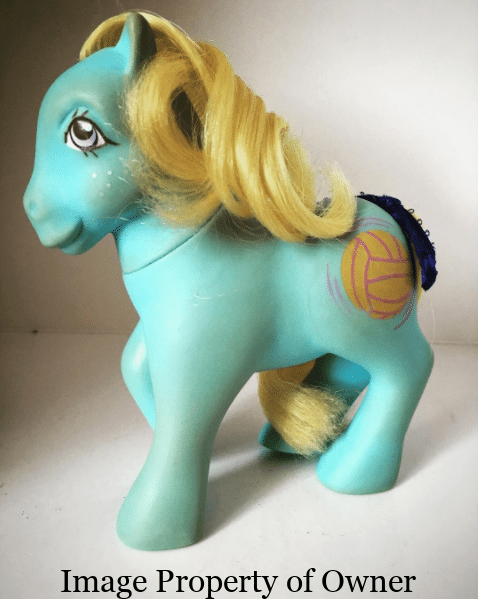 Schooltime Ponies Sportstime