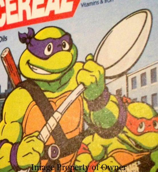 Donatello author unknown
