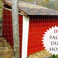 DIY Pallet Duck House {& Pallet Dangers}