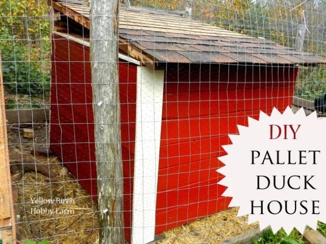 DIY Pallet Duck House from Yellow Birch Hobby Farm