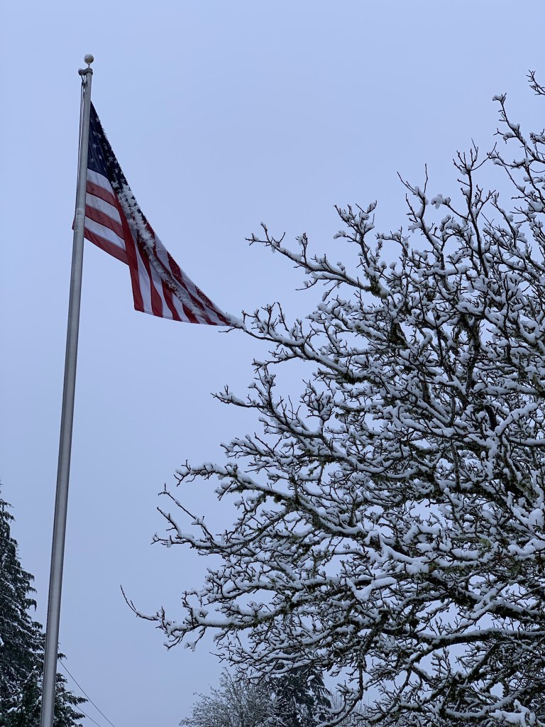 Flag with snow