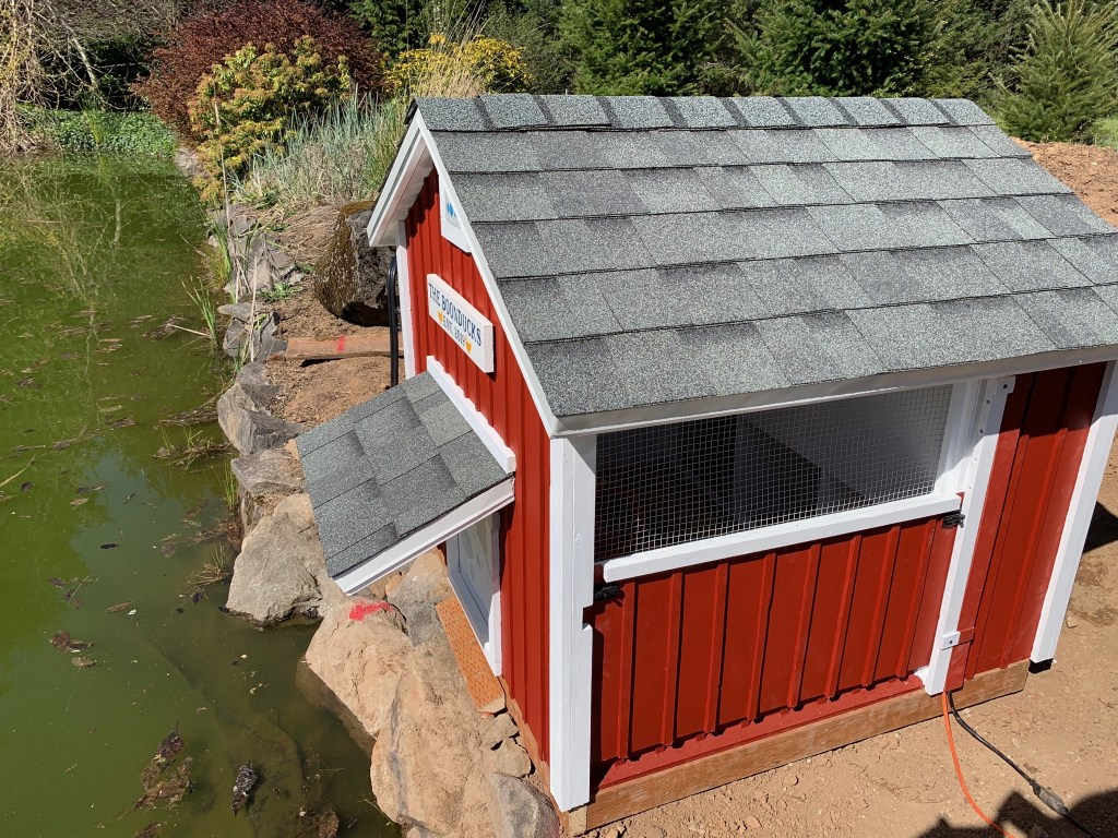 Duck house installed