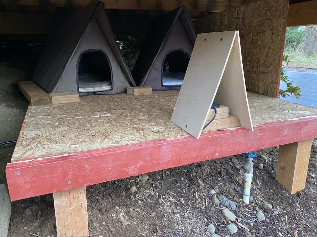 New cat cabins platform