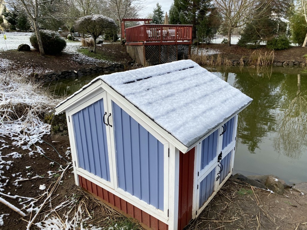 Snow on duck house