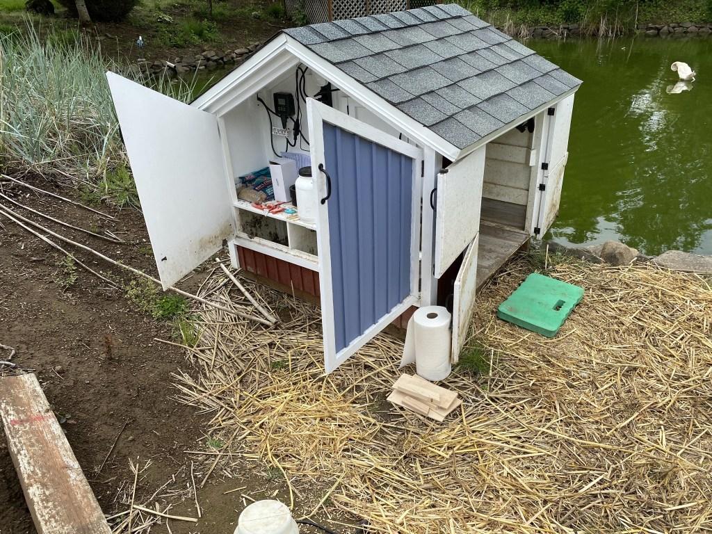 Duck house with open doors