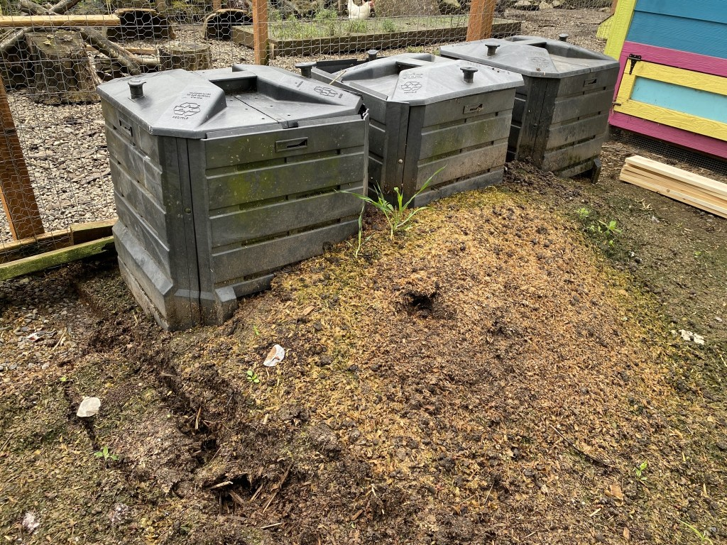 Old compost bins