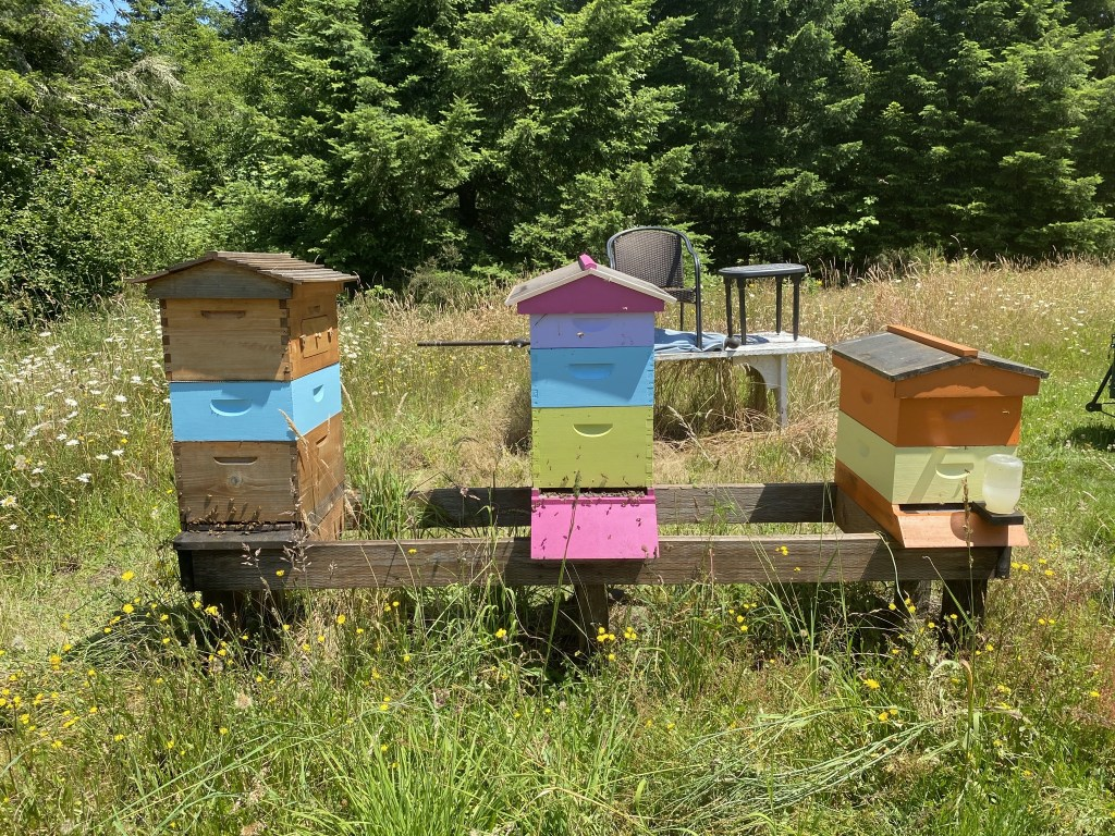 Left three hives