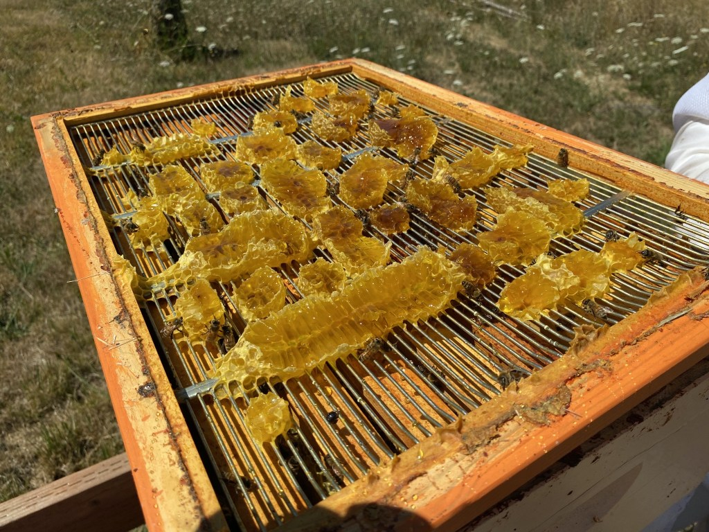 Broken honey comb