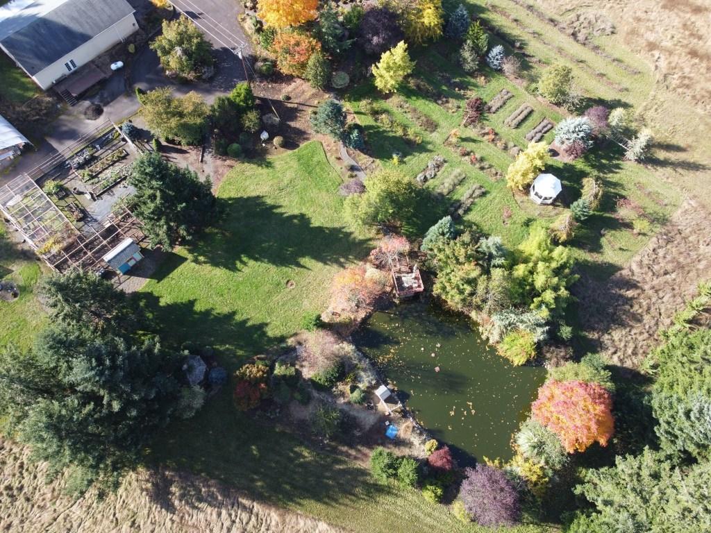 Veggie garden, back lawn, pond, flowerbeds, etc