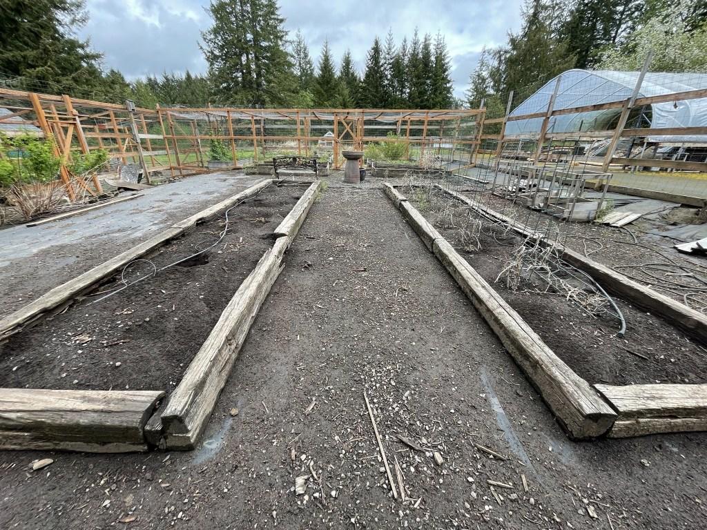 Fallow veggie garden