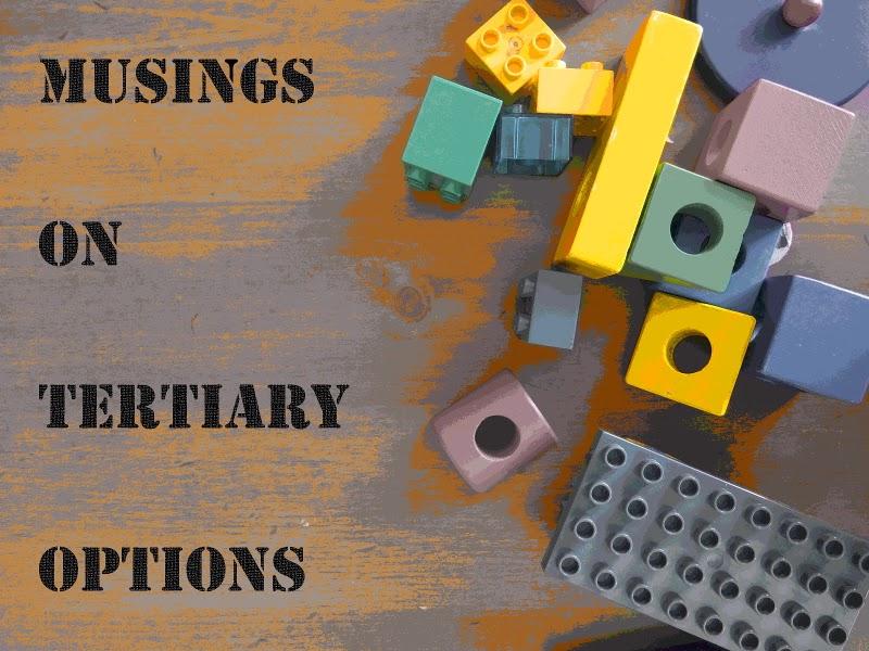 Musings on Tertiary Options, yellowreadis.com Image: Duplo and wooden blocks