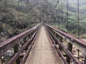 Pelorus Bridge. Wooden walk bridge over a river in a forest