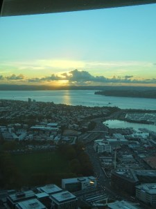 View from Auckland Sky Tower over Auckland city to the harbour
