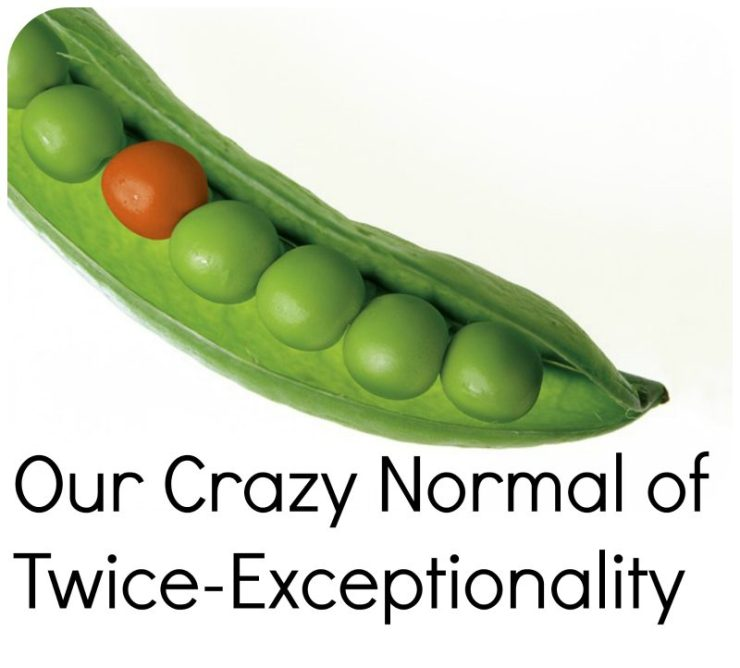 Our Crazy Normal of Twice-Exceptionality, yellowreadis.com. Image: Green peas in a pod with one orange pea